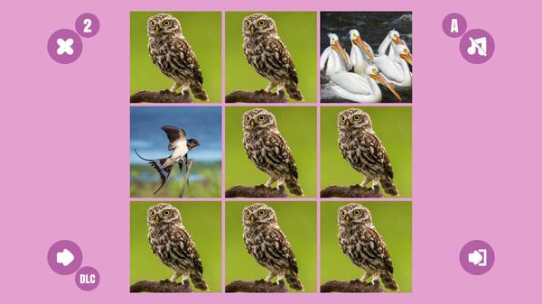 Bird couple B (DLC)