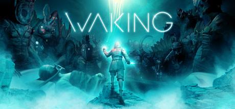Купить Waking