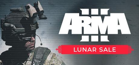 Купить ARMA 3 + ETS 2 + 5 ЛЕТ ВЫСЛУГА