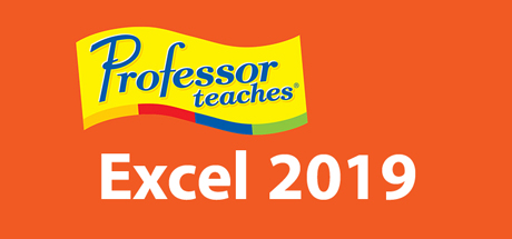 Professor Teaches Excel 2019