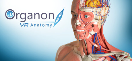 Купить 3D Organon VR Anatomy | Enterprise Edition