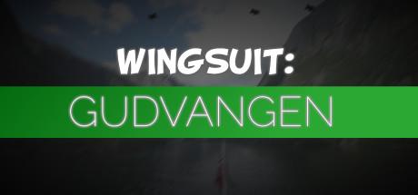 Купить Wingsuit: Gudvangen