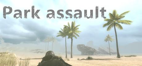 Park assault