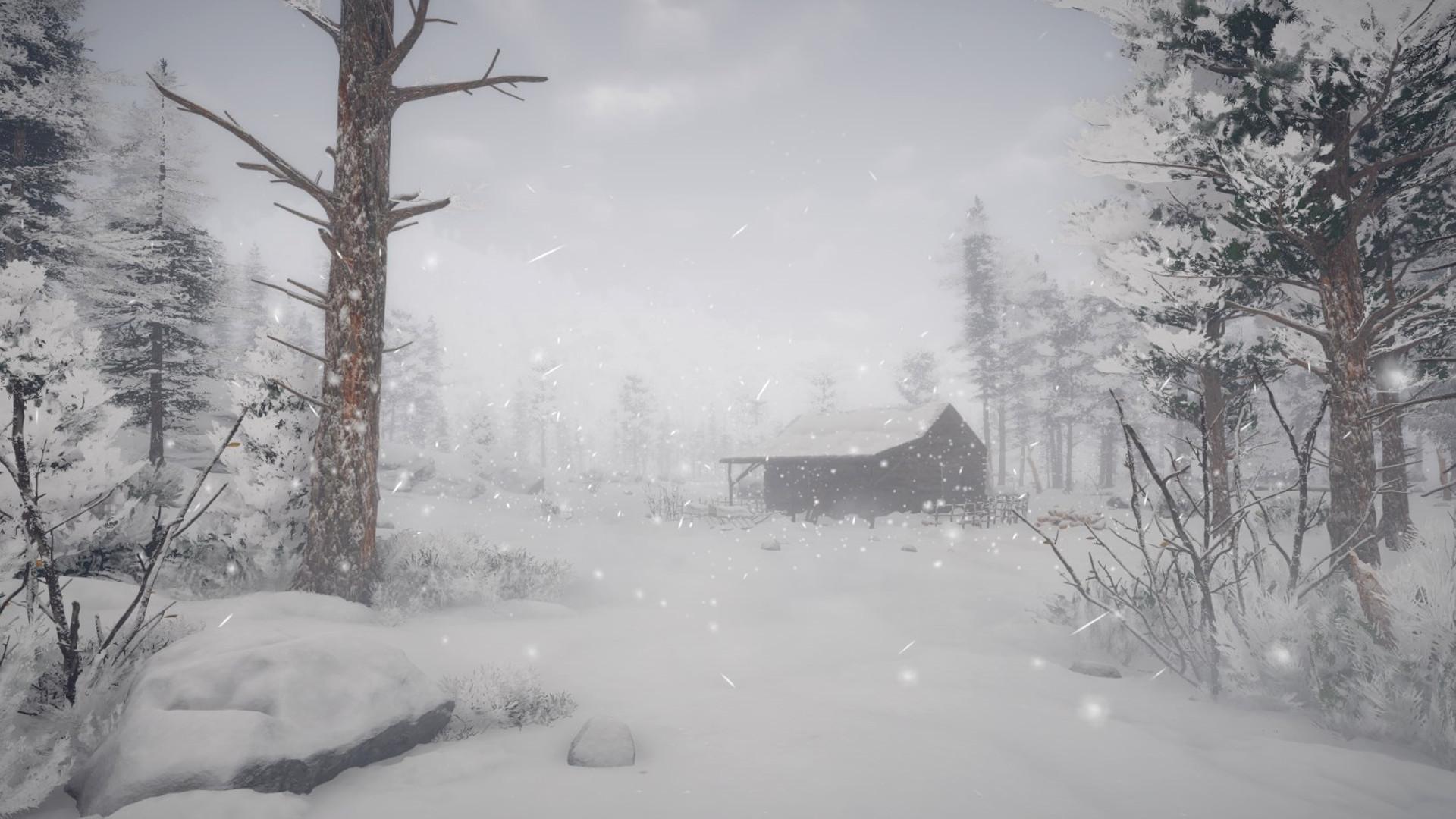 Northern Lights on Steam