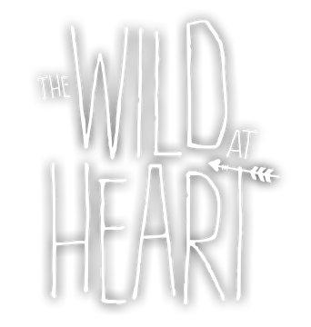 The Wild at Heart - Steam Backlog