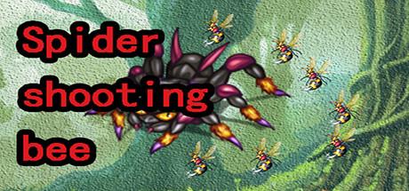 Купить Spider shooting bee