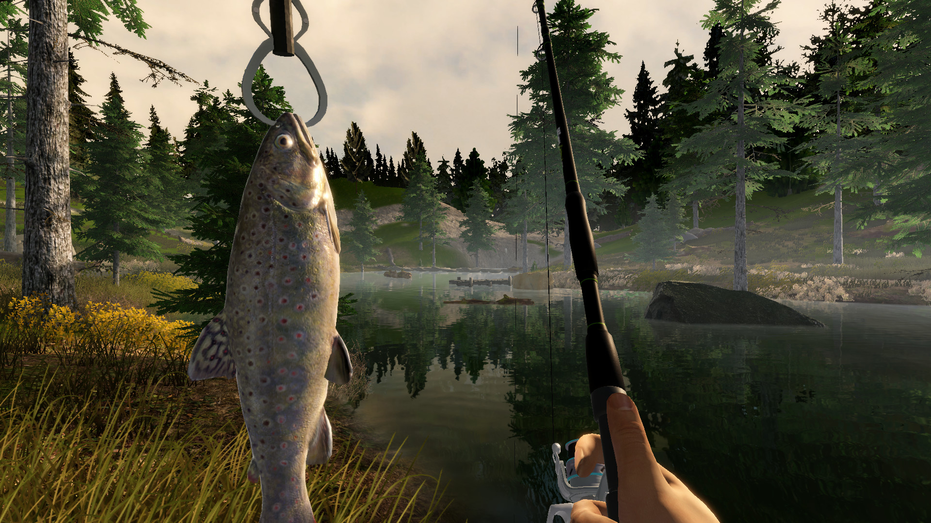 Find the best laptop for Fishing Adventure
