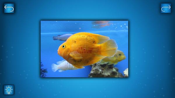 PUZZLE: OCEAN - Puzzle Pack: FISH PACK (DLC)