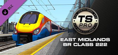 Train Simulator: East Midlands BR Class 222 DEMU Add-On