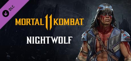 Mortal Kombat 11 Nightwolf