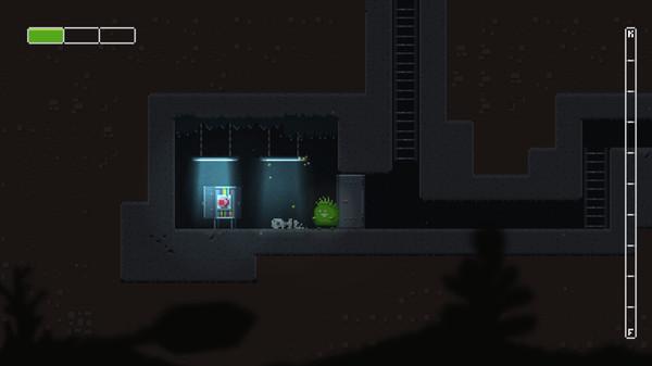 Flippin Kaktus