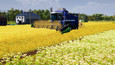 Farm Manager 2021 picture11