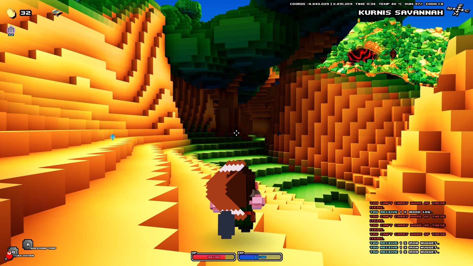 Screenshot of Cube World server hosting