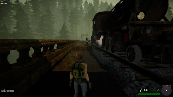 Capture d'écran n°1 du Jeu Jane Westlake Adventures - The Mystery Train