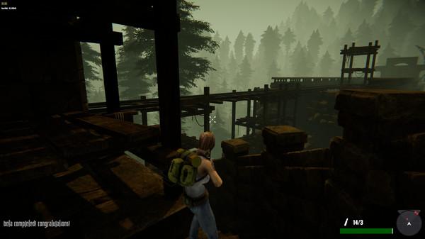Capture d'écran n°4 du Jeu Jane Westlake Adventures - The Mystery Train