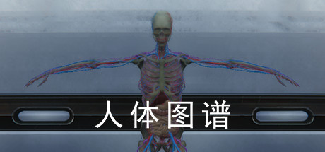 Купить 人体图谱