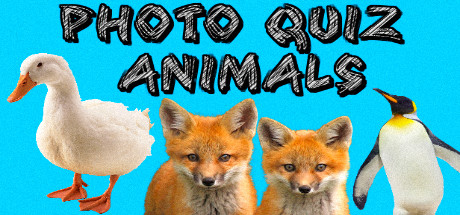 Photo Quiz - Animals