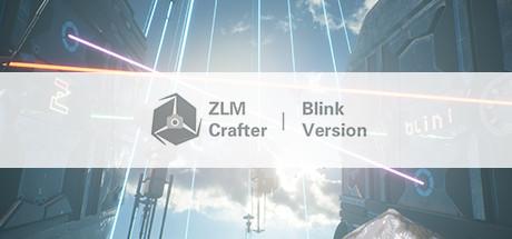 Blink Cam