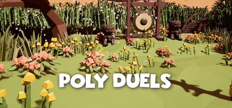 Poly Duels cover art