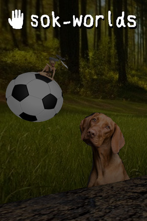 sok-worlds poster image on Steam Backlog