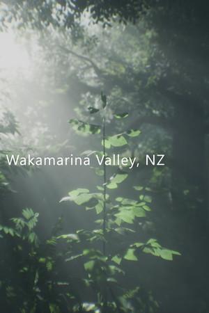 Wakamarina Valley, New Zealand poster image on Steam Backlog
