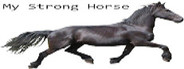 My Strong Horse