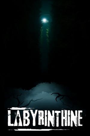 Labyrinthine poster image on Steam Backlog