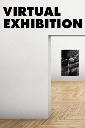 Virtual Exhibition poster image on Steam Backlog