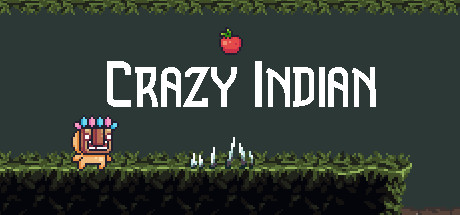 Crazy indian cover art