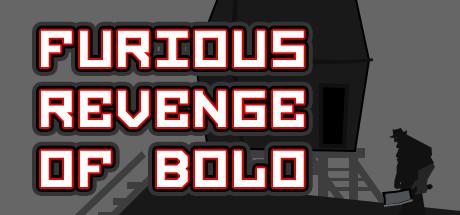 Furious Revenge of Bolo cover art