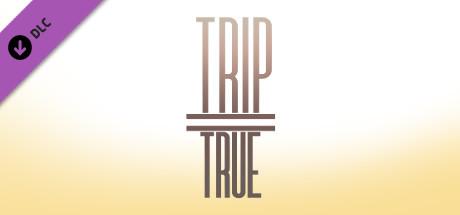 trip=true: Artbook