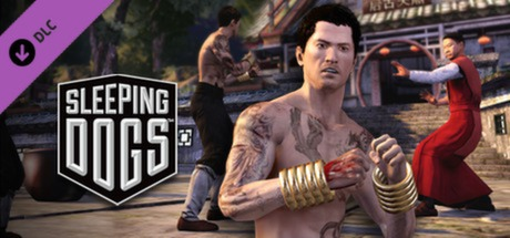 Купить Sleeping Dogs: Martial Arts Pack (DLC)
