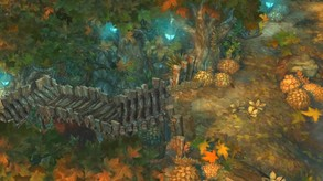 Tree of Savior (English Ver.) video