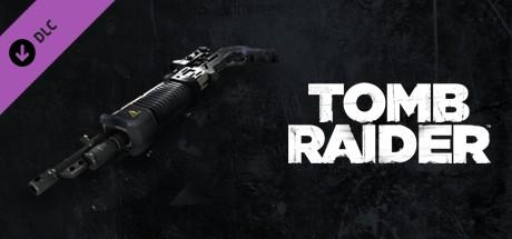 Купить Tomb Raider: Agency SPS 12 (DLC)