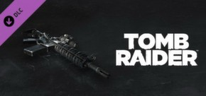 Tomb Raider: Hitman Gun - HX AP-15 cover art