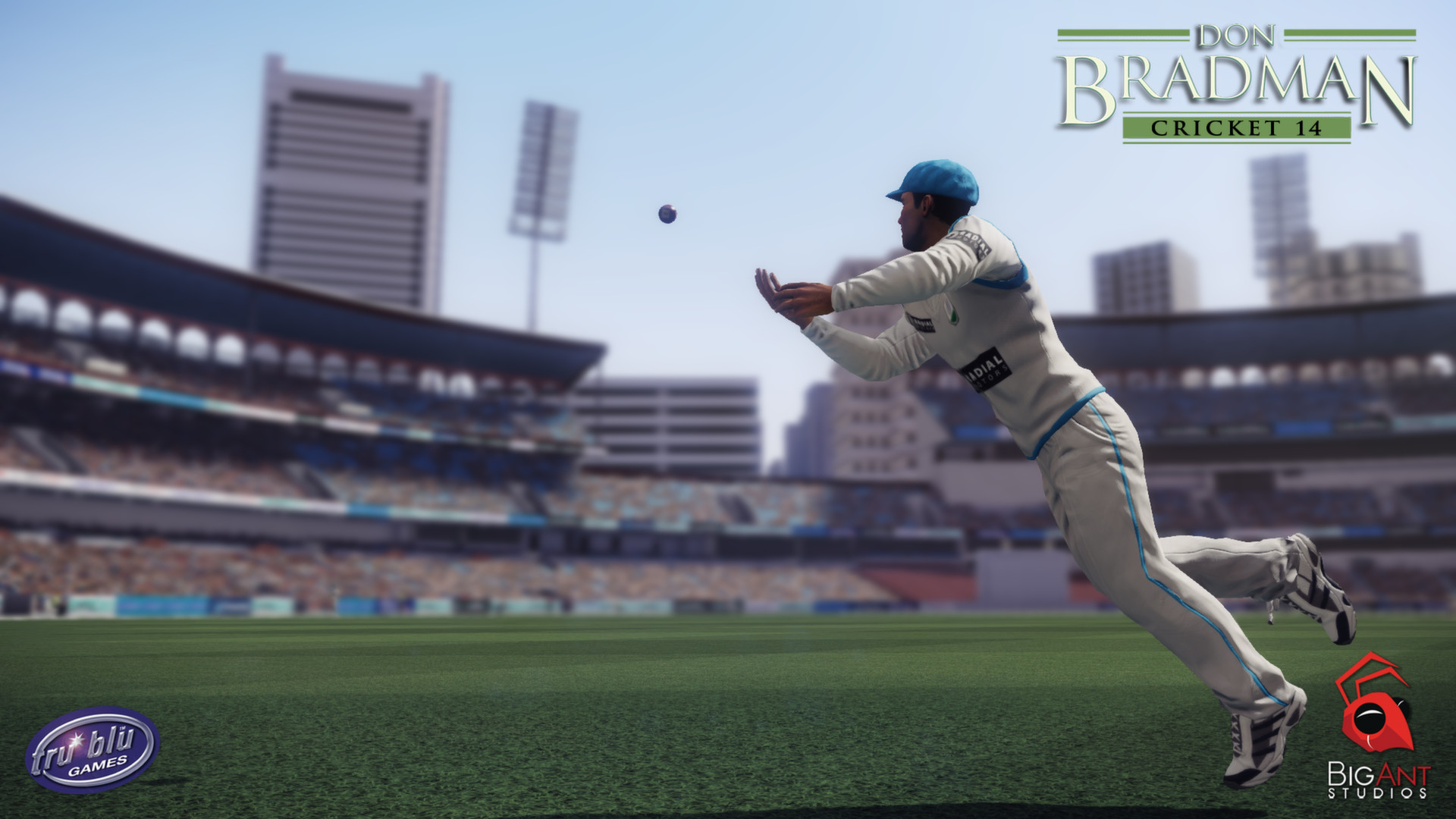 Don Bradman Cricket 14 System Requirements - Can I Run It