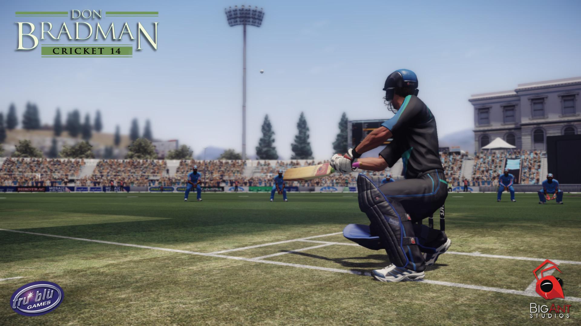 Don bradman cricket 14 full pc game download