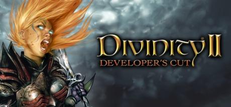 Купить Divinity II: Developer's Cut