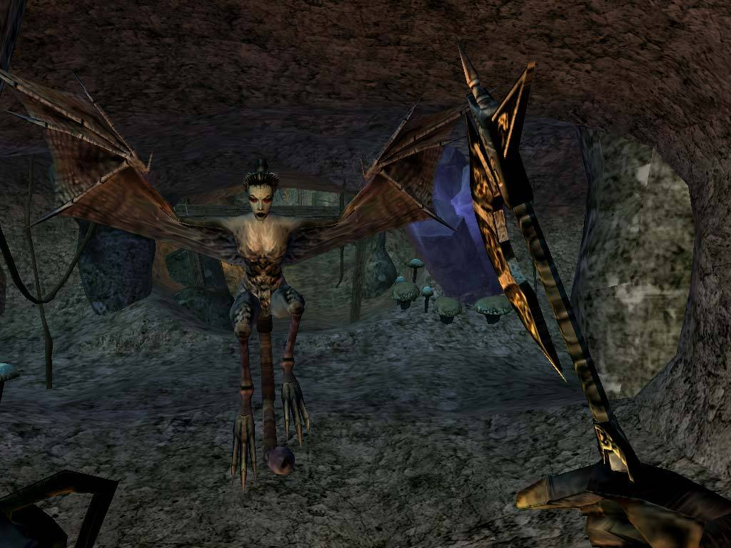 The Elder Scrolls III: Morrowind GOTY Edition screenshot 3