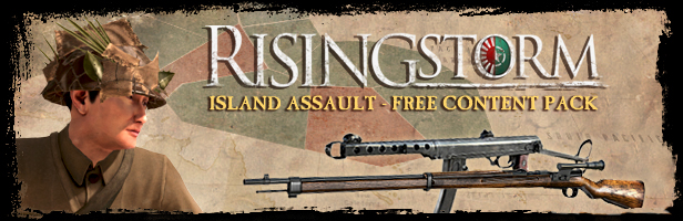 , Rising Storm Game of the Year Edition, P2Gamer