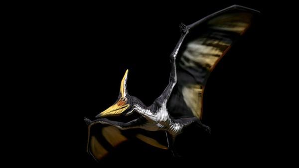Primal Carnage - Dinosaur Skin Pack 3 (DLC)