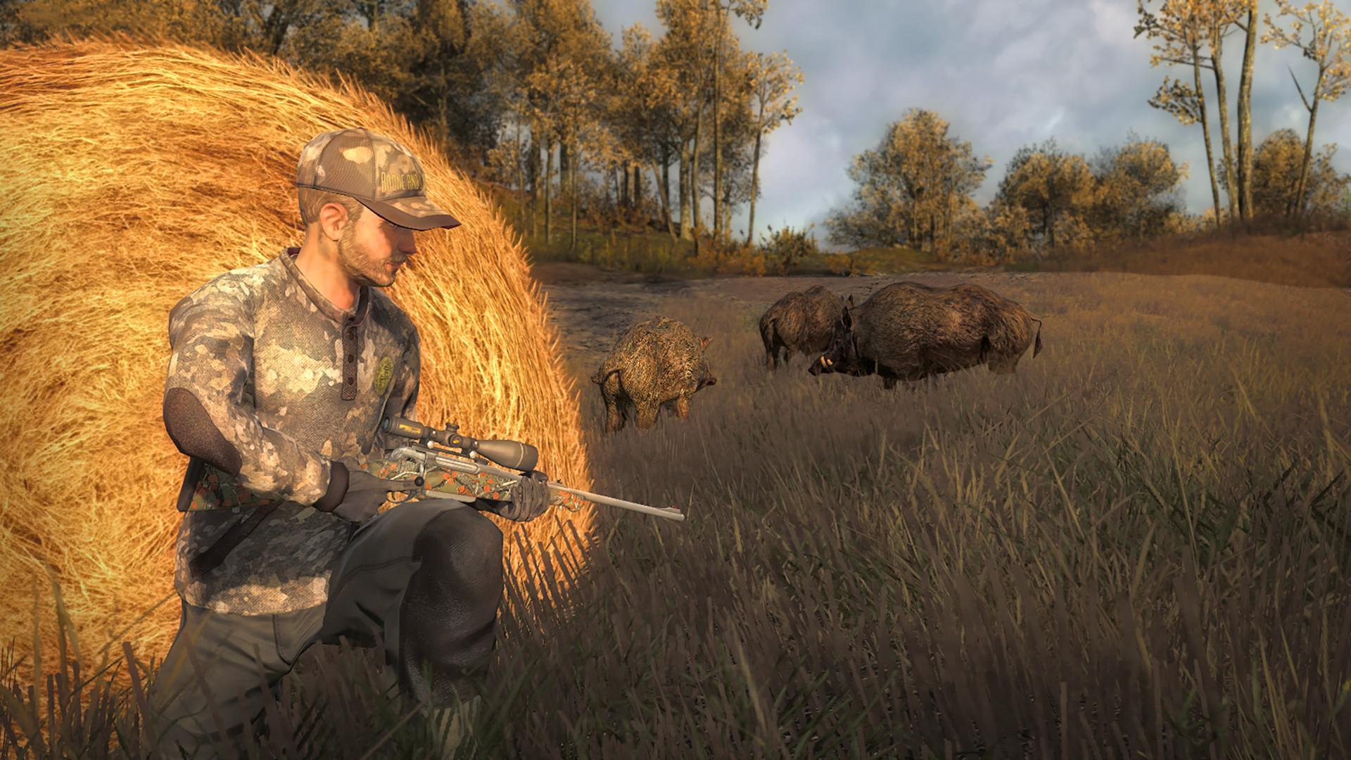 Image of: Wild Animal 2299linksinfo Thehunter Classic On Steam