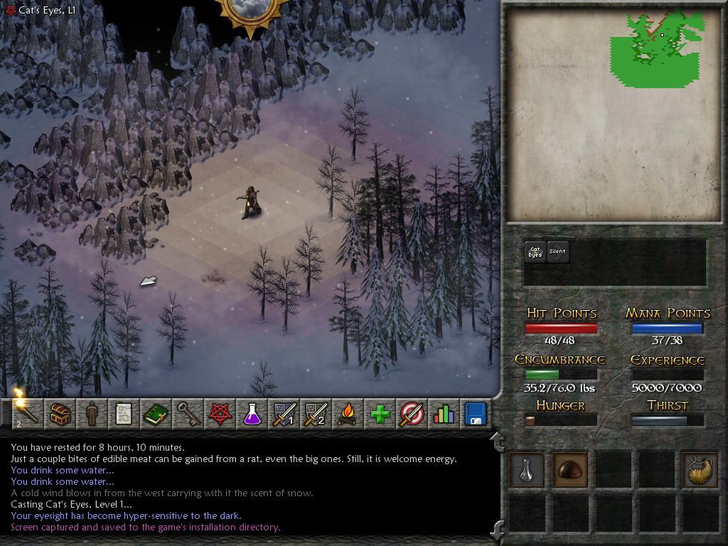Eschalon Book II screenshot 2
