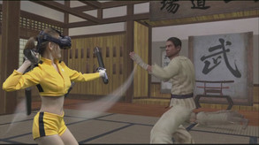 Kung Fu All-Star VR