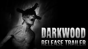 Video of Darkwood