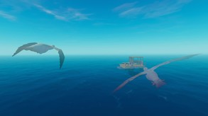Video of Raft