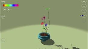 Flower Design video