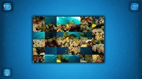 PUZZLE: OCEAN video