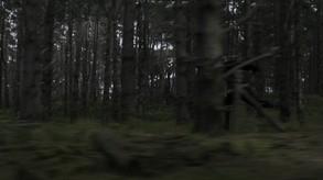 Four Kings One War - Virtual Reality (DLC) video