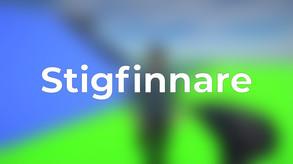 Stigfinnare video